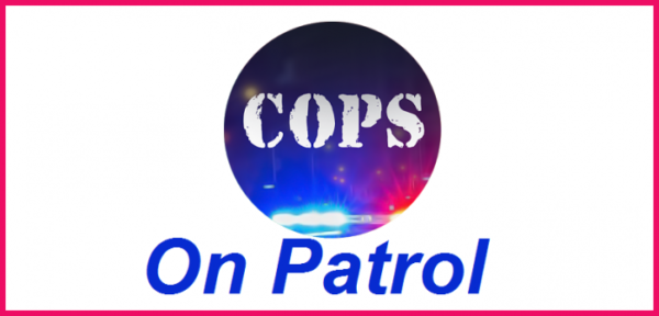 Cops – On Patrol Android apk + data v1.0 (MEGA)